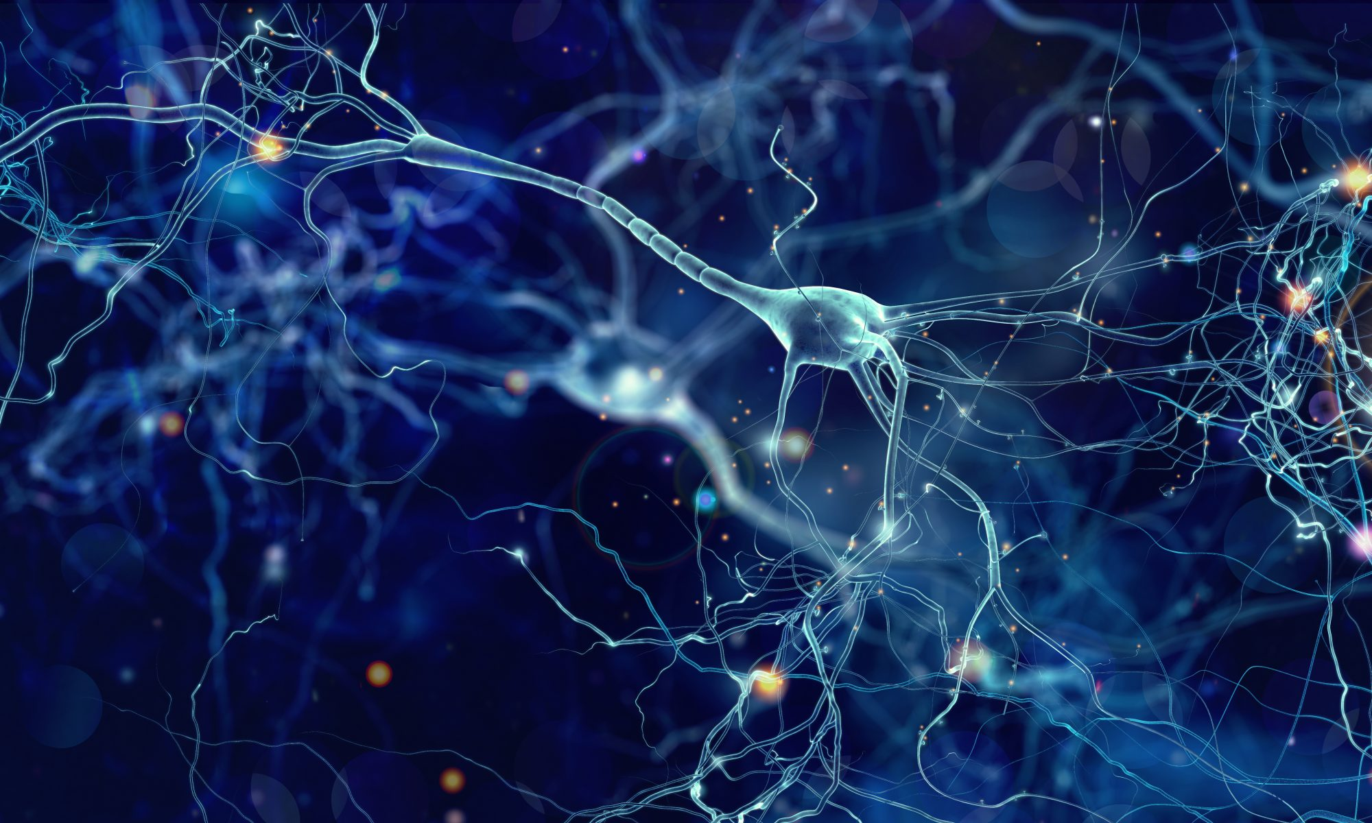 IFEN Neurofeedback Blog